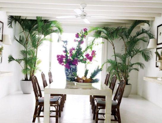 Beach-house-in-Brazil-8.jpg