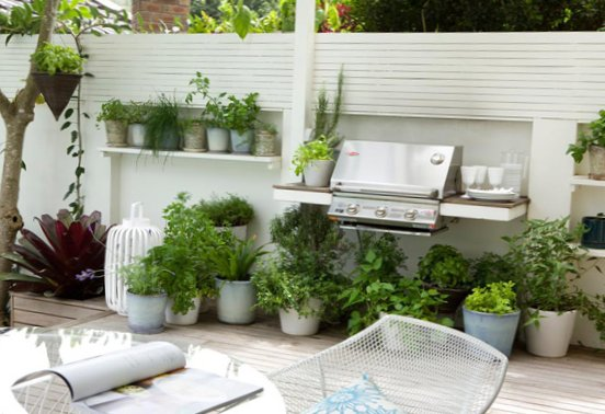 Small-stylish-garden-4.jpg
