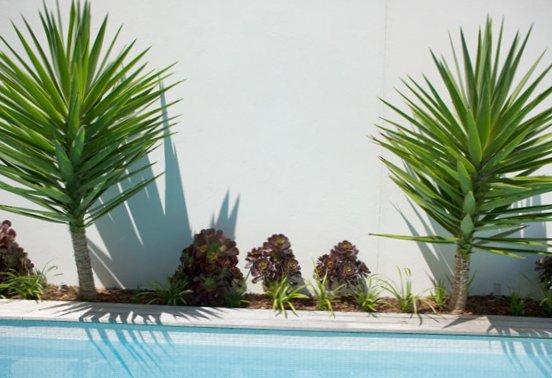 Small-stylish-garden-7.jpg