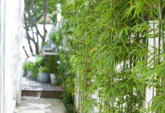 Small-stylish-garden-8.jpg